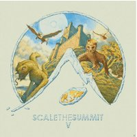 Scale The Summit - V - (LP + Download)
