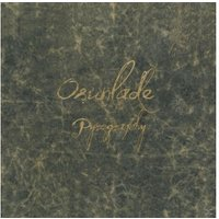 Osunlade - Pyrography (Deluxe 2LP+Art Book) - (LP + Buch)