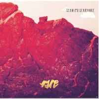 Schnipo Schranke - Rare - (LP + Download)
