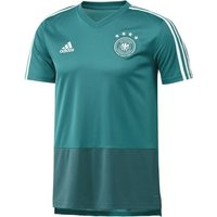 Adidas DFB Training Jersey Kinder WM 2018 eqt green/real teal/white