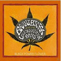 Brant Bjork And The Low Desert Punk Band - Black Power Flower (Ltd.Black Vinyl) - (Vinyl)