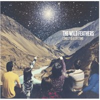 The Wild Feathers - Lonely Is A Lifetime - (Vinyl)