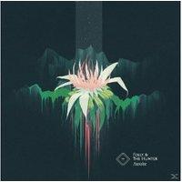 Folly & The Hunter - Awake (Vinyl)
