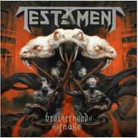 Testament - Brotherhood Of The Snake (Ltd.Box-Set) (Vinyl)
