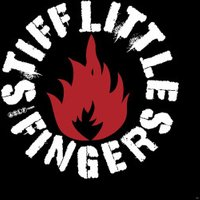 Stiff Little Fingers - Fly The Flags (Live At The Brixton (Vinyl)