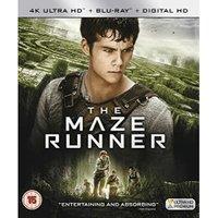The Maze Runner [Blu-ray] [2014]