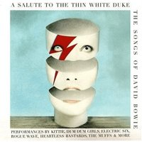 Various Artists - Salute to the Thin White Duke - the Songs of David Bowie [VINYL]