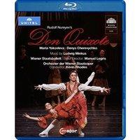 Rudolf Nureyev's Don Quixote (Wiener Staatsballett/Wieder Staatsoper + Kevin Rhodes) [Blu-ray]
