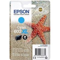 Epson C13T03A24010