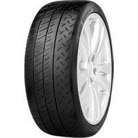 Michelin Pilot Sport PS2 225/45 R17 91Y