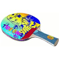Butterfly Timo Boll 500