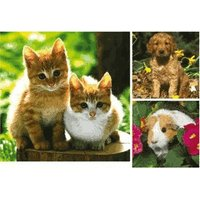 Ravensburger Home Animals (3 x 49 pieces)
