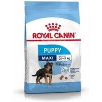 Royal Canin Maxi Junior (4 kg)