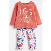 Pink Whoops Daisy Poppy Jersey Applique Top And Leggings Set  Size 9M-12M