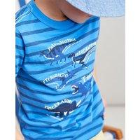Blue Stripe Dino Facts Ben Screenprint T-Shirt 3-12 Yr  Size 9Yr-10Yr