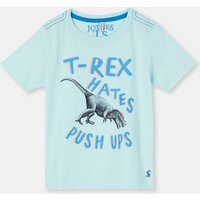 Aqua Trex Ben Screenprint T-Shirt 1-6 Yr  Size 1Yr