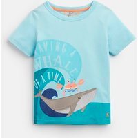 Aqua Whale Archie Applique T-Shirt 1-6 Yr  Size 3Yr
