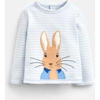 Blue Stripe Peter Rabbit Dash Applique Sweatshirt  Size 12M-18M