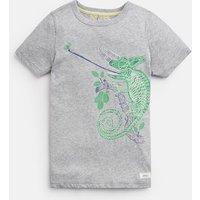 GREY CHAMELEON Ray Glow In The Dark T-Shirt 3-12yr  Size 11yr-12yr