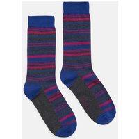GREY MULTI STRIPE Striking Socks  Size 7-12