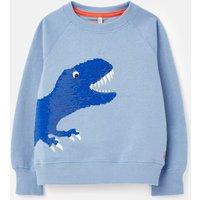 211253 Raglan Sweatshirt