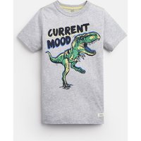 Grey Dino Ben Screenprint T-Shirt 3-12 Yr  Size 7Yr-8Yr