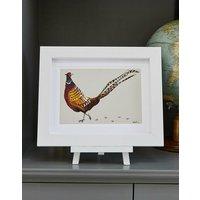 Mr Pheasant Fine Art Print