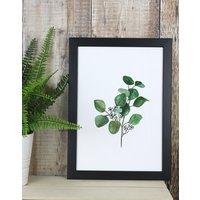 Watercolour Eucalyptus Print