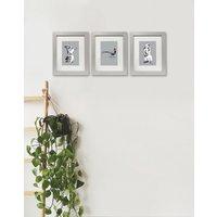 Set of Three Woodland Animal Prints