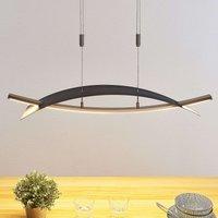 Lámpara colgante LED Marija, horizontal, negro
