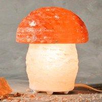 Leuke zoutlamp PILZ in paddenstoel vorm