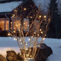 Guirlande lumineuse LED Martin à 20 lampes (3722-100)