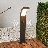 Bewegungsmelder-Wegeleuchte Juvia mit LEDs