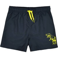 Plain Swim Shorts with Dinosaur Motif, 3-12 Years