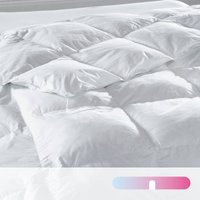 Best Suprelle Fusion Synthetic/Natural Duvet, 300 gr/m2