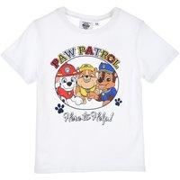 Cotton Short Sleeve T-Shirt, 3-6 Years.
