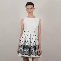 Short Graphic Print Skater Dress