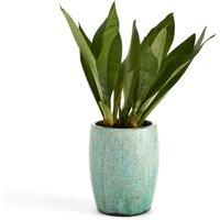 Saksio Small Planter