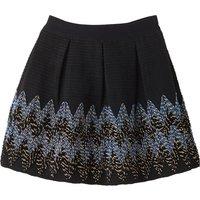 Embroidered Skater Skirt