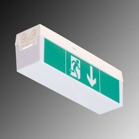 LED emergency exit light C Lux Standard  3 hrs
