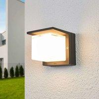Bega LED outdoor wall lamp Erik dimmed on one side