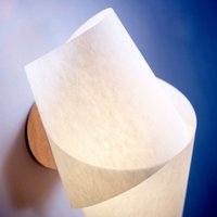 Modern wall light Julii  beech