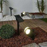 Lore   set of 2 LED solar spotlights  ground spike