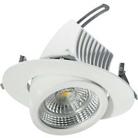 Pivotable LED downlight 20 cm  48 W
