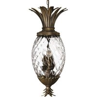 Plantation Hanging Light Unusual