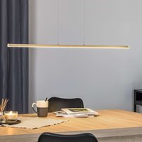 90 cm LED hanging light Ella  height adjustable