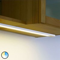 Dynamic LED Top Stick surface light  60 cm