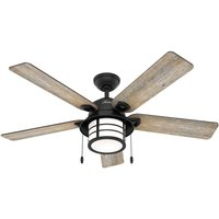 Hunter Santorini fan with light  wood black