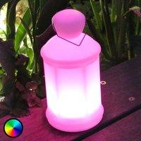 Decorative LED light Toby w  remote control