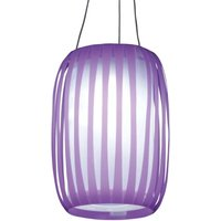In lantern design   LED solar light Lilja purple